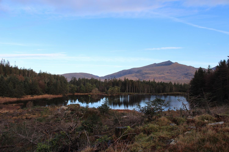 View of Snowdon from Beddgelert Forest