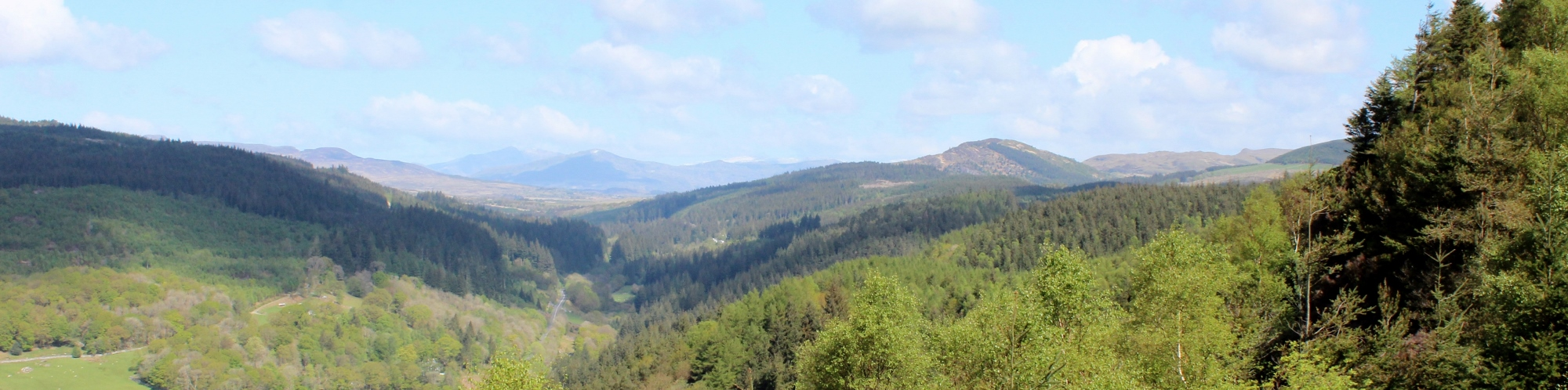 View of Cader Idris from Penrhos Mountain