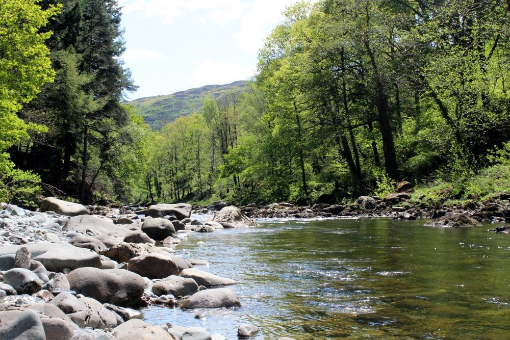 Mawddach River at Coed y Brenin