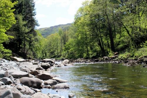 Mawddach River