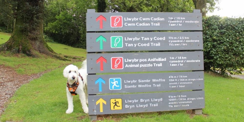 tan y Coed footpath sign