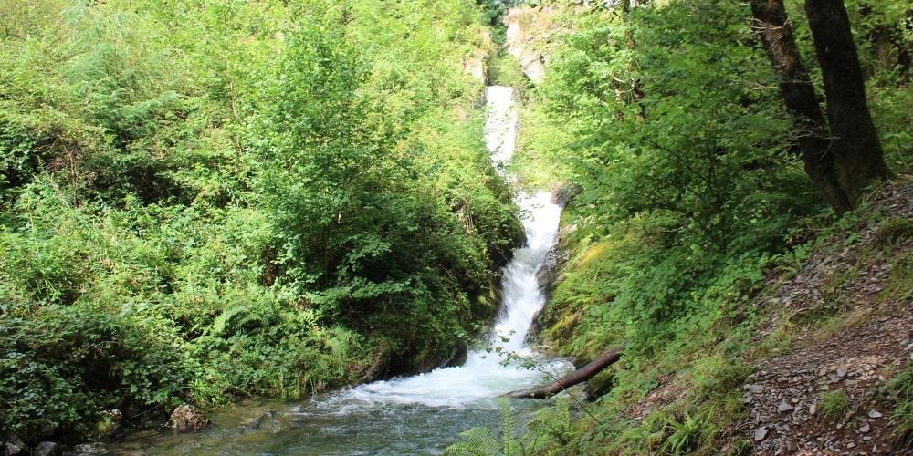 tan y Coed waterfall