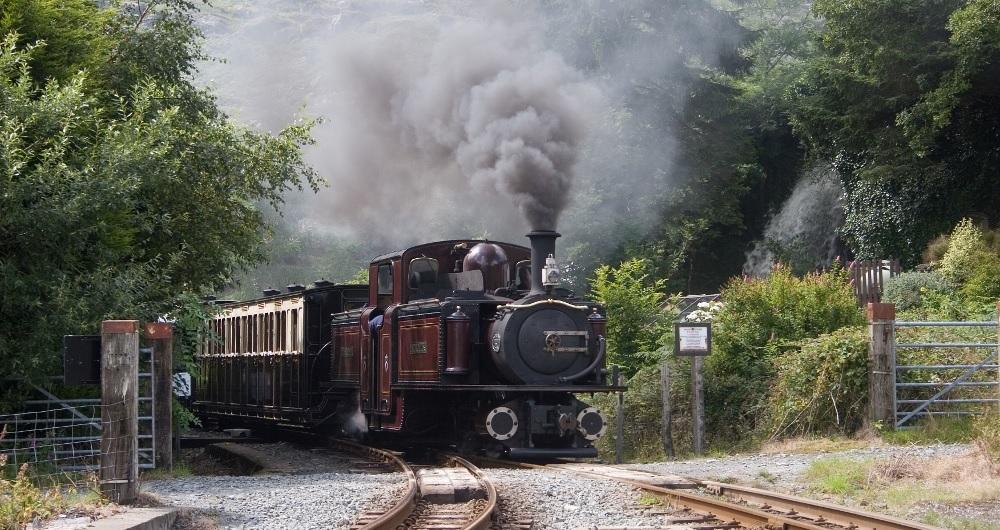Welsh Highlamd Railway Beddgelert Forest